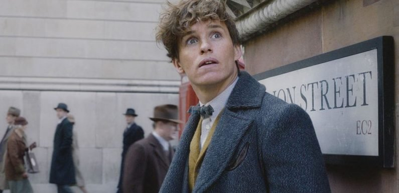 The 'Fantastic Beasts: The Crimes Of Grindelwald' International Trailer Is So Intense