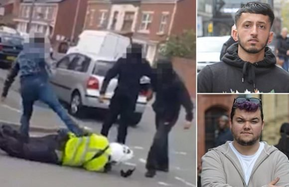 Thug who was among mob that battered traffic warden faces jail
