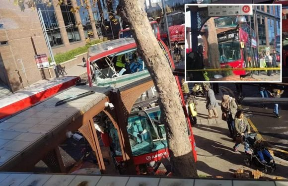 Croydon bus crash that left girl, 15, fighting for life and 20 others injured may have been caused by a POTHOLE