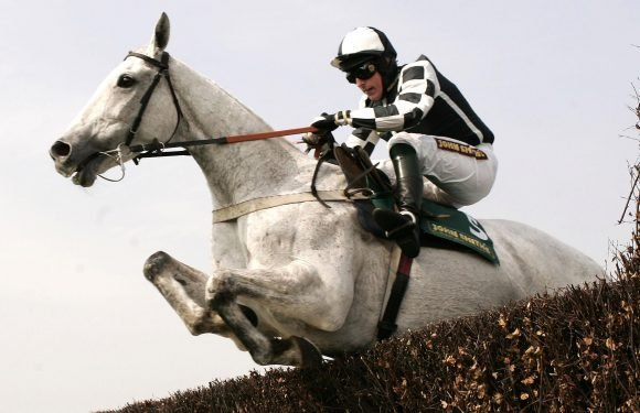 Jumps racing legend Monet's Garden dies at the age of 20