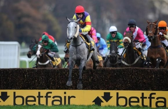 Best horse racing tips for today's action at Exeter and Uttoxeter from Tom Bull