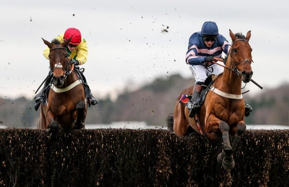 Best horse racing tips for today's action at Catterick, Ffos Las, Ascot and Kempton from Tom Bull