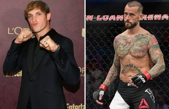 CM Punk blasts Logan Paul for dead body video and discusses fight with YouTube star