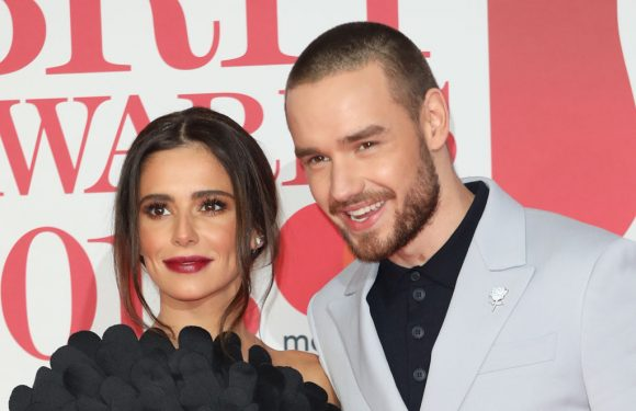 Cheryl Cole Says She Won't Date Again After Liam Payne Split