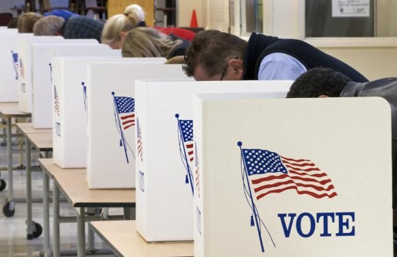 What Democrats should have learned from their excellent Election Day
