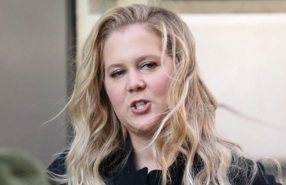 Baby Battle! See Pregnant Amy Schumer Vomit On Her Way To Stand-Up Gig