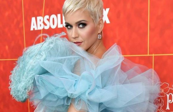 Katy Perry Pens Tribute to Friend Who Died After Long Cancer Battle