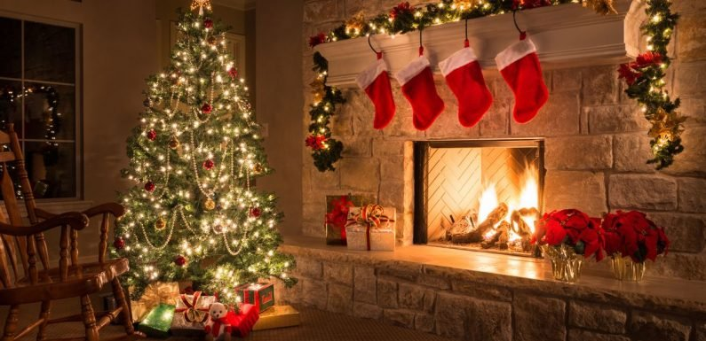 How to keep your Christmas tree alive - and it involves ...