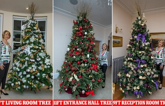 Woman who pays a team of FIVE to decorate her three Christmas trees