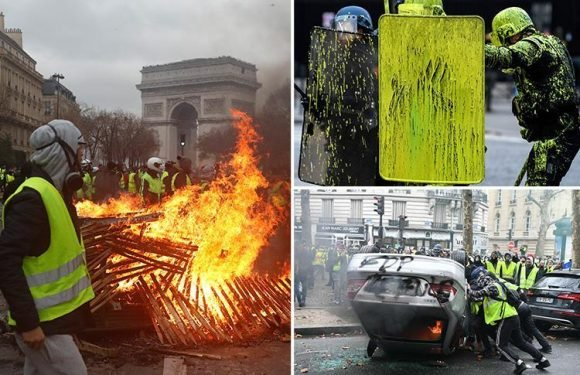 Paris on lockdown as protestors 'steal assault rifle from cops', torch cars and buildings in clashes with police