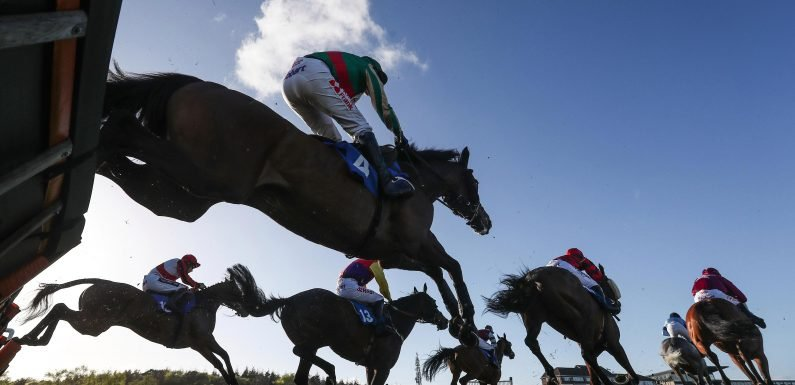 Friday's horse racing NAP: Your best bet for today's racing from Callum Jamieson