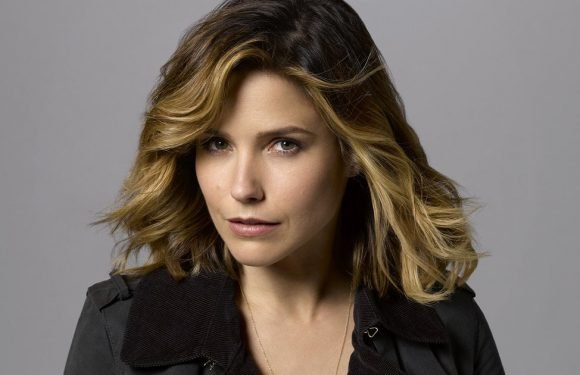 Sophia Bush Alludes to Being Assaulted on Set of 'Chicago P.D.' While Spilling on 'Barrage of Abusive Behavior'