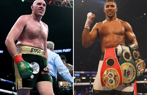 Tyson Fury nominated for five Ring Magazine awards but Anthony Joshua doesn't even get one