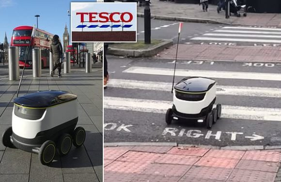 Now you can get your food shopping delivered by a ROBOT