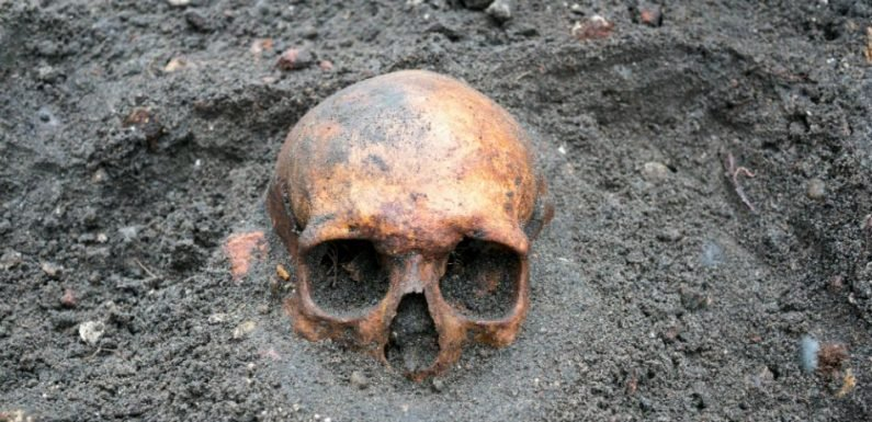 Archaeologists Are Baffled By Decapitated Skeletons That Have Been Found In A Roman-Era Cemetery In England