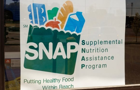 Food stamp app breaks download record amid government shutdown