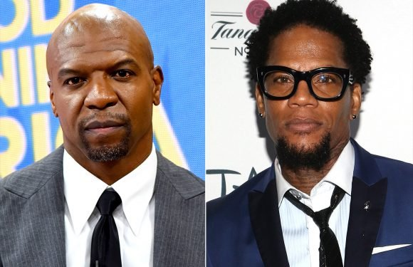 Terry Crews Fires Back at D.L. Hughley for Questioning His Sexual Assault Allegation