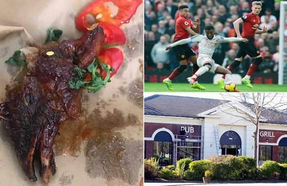 Football fan bites into chicken's HEAD after ordering plate of wings