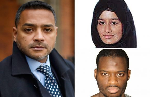 ISIS bride lawyer who moaned teen was being treated worse than Nazis previously said Lee Rigby killer was 'created' by UK security