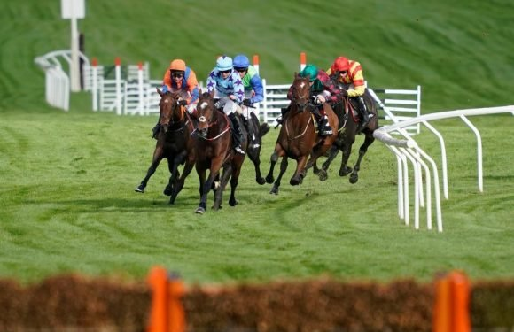 Best horse racing tips for today's action at Ascot, Haydock, Wincanton, Lingfield and Kempton from Tom Bull