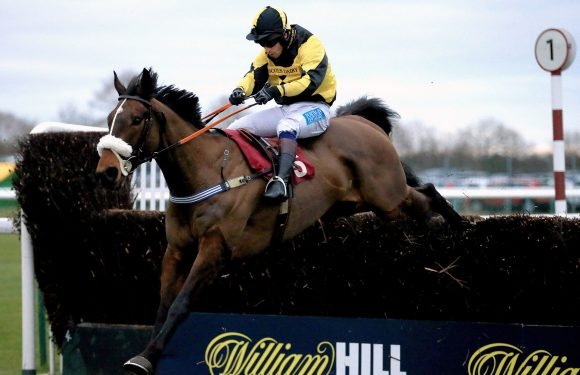 Best horse racing tips for today's action at Wolverhampton, Wetherby and Taunton from Tom Bull