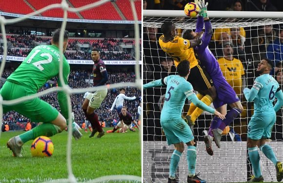 Newcastle keeper Martin Dubravka getting by with a little help from his friends