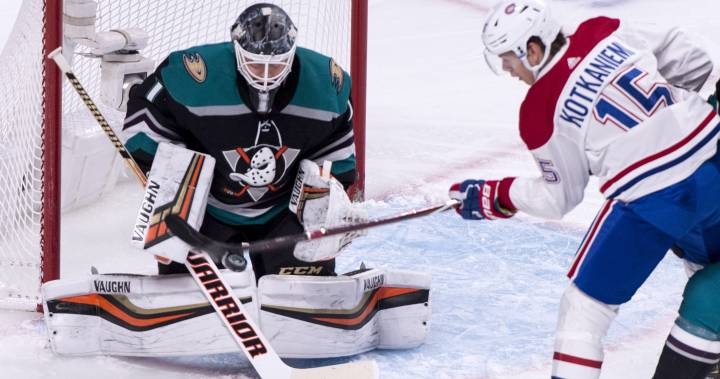 Call of the Wilde: Montreal Canadiens dominate the Anaheim Ducks