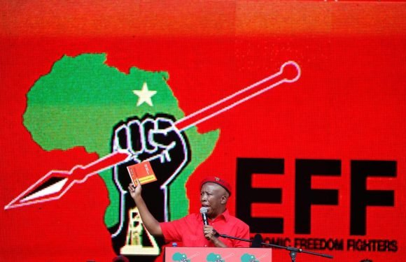 South Africa's EFF party says in election manifesto to nationalize mines