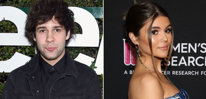 David Dobrik: I'm 'Definitely' Checking In With Pal Olivia Jade Amid Scam