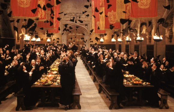 There's a Harry Potter-inspired brunch launching and it looks magical for muggles