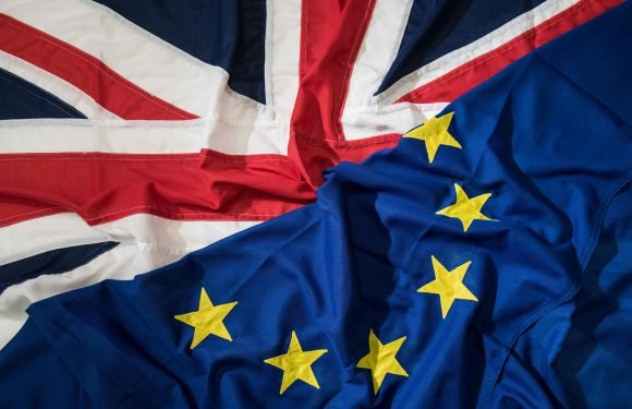 What is Brexit, is it going to be delayed and what happens after March 29, 2019?