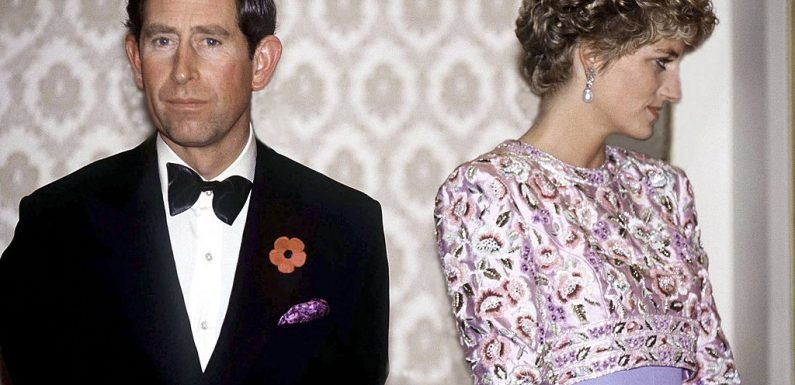 Do Prince Charles and Princess Diana Really Have a Secret Daughter?