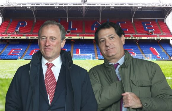 Crystal Palace up for sale by club's billionaire American owners who hold talks with potential buyers