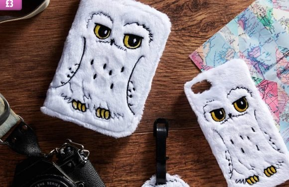 Primark is selling fluffy Hedwig phone and passport cases for just £3 – and they're simply magical