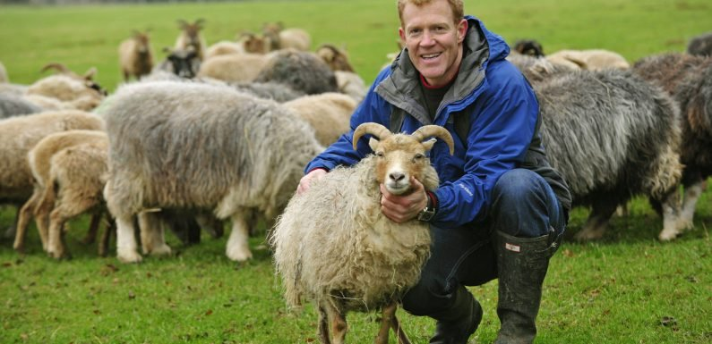Who is Adam Henson? Countryfile host and Farming Today expert with a farm in the Cotswolds