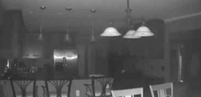 Homeowner STUNNED after discovering reason why motion camera was set off