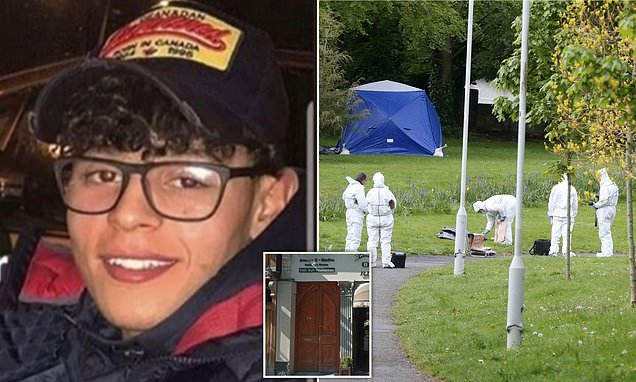 Teenager, 18, 'stabbed to death by a gang of thugs' as he walked home