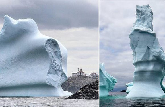 Stunning images show the towering structures in 'iceberg alley'