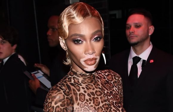 Winnie Harlow's Leopard Catsuit at the Met Gala Afterparty Is — Pardon the Pun — Purrfect
