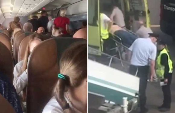 Air rage plane passenger strangles woman on board then has a heart attack and dies after being tied to seat – The Sun
