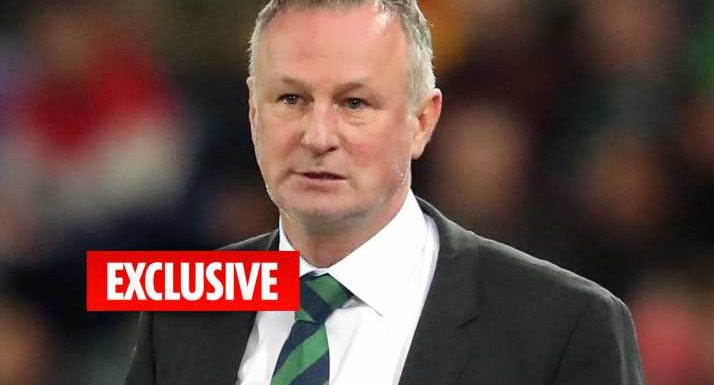 West Brom make Michael O'Neill and Lee Bowyer manager targets as they seek to replace Darren Moore