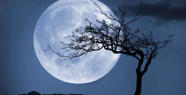 Blue Moon: 'Flower Moon' set to light up the sky on May 18