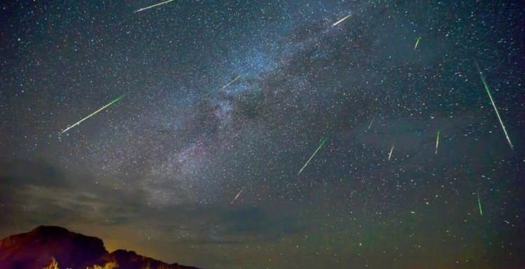 Halley's Comet 2019: What time will Eta Aquarid meteor shower peak?