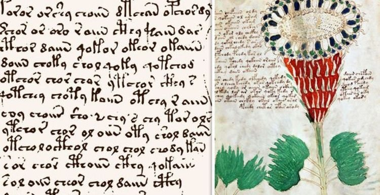 'Alien' Voynich Manuscript decoded: University of Bristol 'CONCERNED' over its research