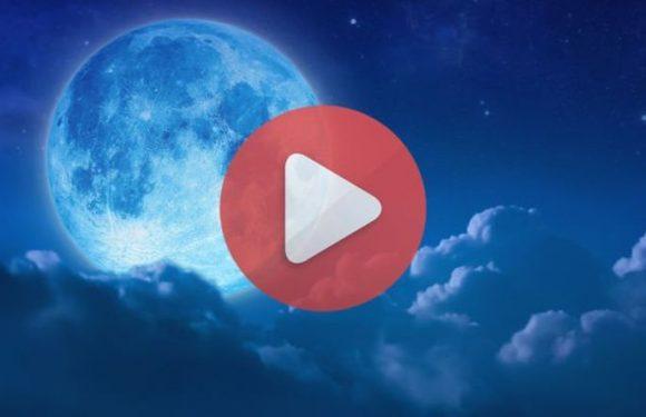 Blue Moon 2019 LIVE stream: Watch the May Flower Moon light up the sky online HERE