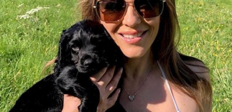 Liz Hurley, 53, strips to TEENY bikini as she poses with pooch: 'Beautiful puppies'
