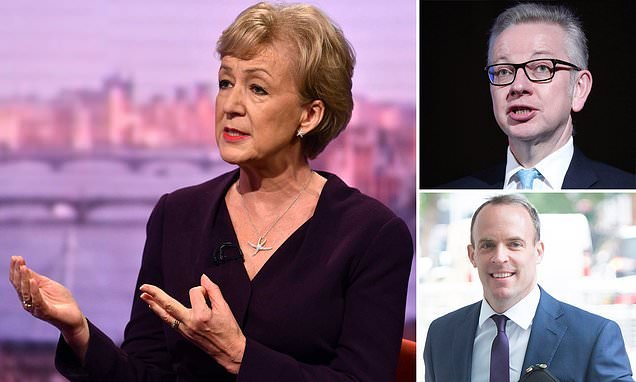 Andrea Leadsom admits to smoking cannabis at university