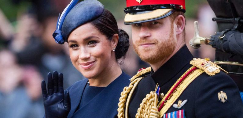 Vile website targeting Meghan Markle and Prince Harry refuses to take down racist abuse and vows to 'protect' extremists' rights – The Sun