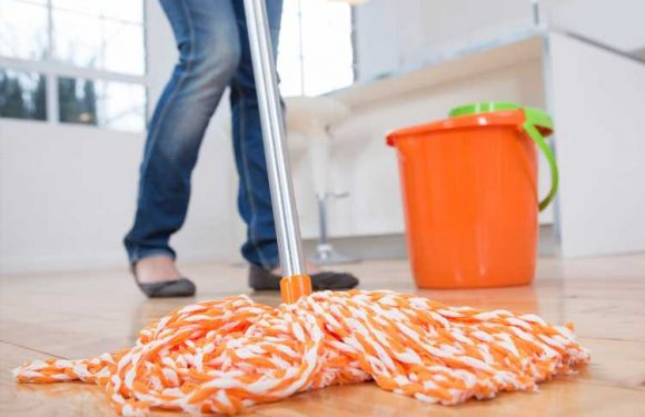 The most harmful areas of your home that you MUST keep clean or risk infection – The Sun