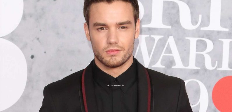 Liam Payne Says He Coped with One Direction Fame by Drinking: 'It Got a Little Bit Toxic'